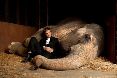 Water-For-Elephants-Stills-He-looks-ADORABLE-meu-anjo-18502633-2560-1707