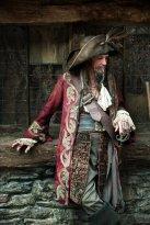 Pirati dei caraibi 8