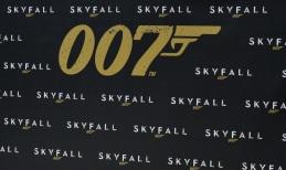 """""""Skyfall"""" Cast Photo Call"""