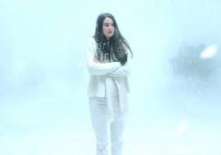 White bird in a blizzard 3