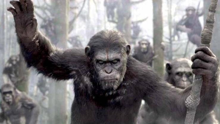 apes-revolution-il-pianeta-delle-scimmie-orizzontale-1864x1050