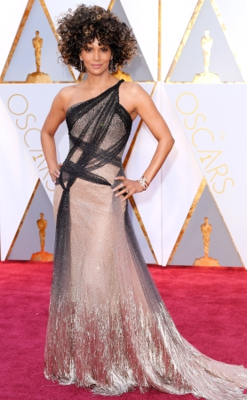 Mandatory Credit: Photo by David Fisher/REX/Shutterstock (8434880eo) Halle Berry 89th Annual Academy Awards, Arrivals, Los Angeles, USA - 26 Feb 2017