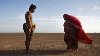 Birds of passage 4